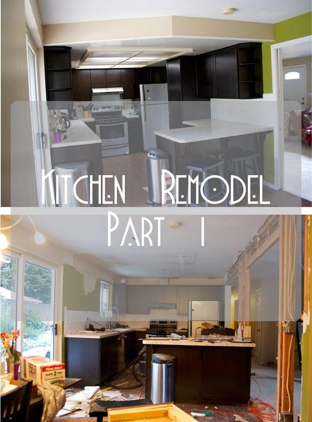 Kitchen Remodel Part One