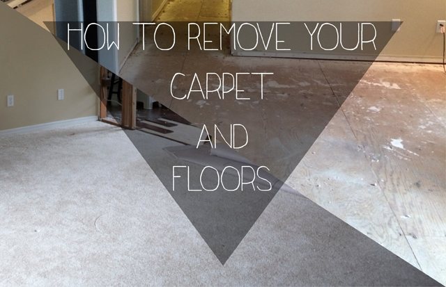 Petite Modern Life: how to remove carpet and floors