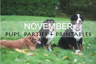 November Pups, Parties + Printables