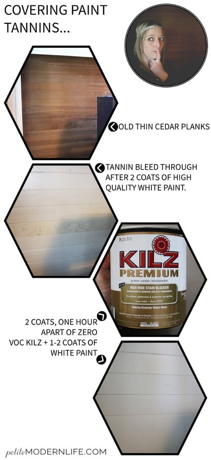 Painting over old raw wood? Don't waste your good paint! Use these ZERO VOC tannin priming tips!