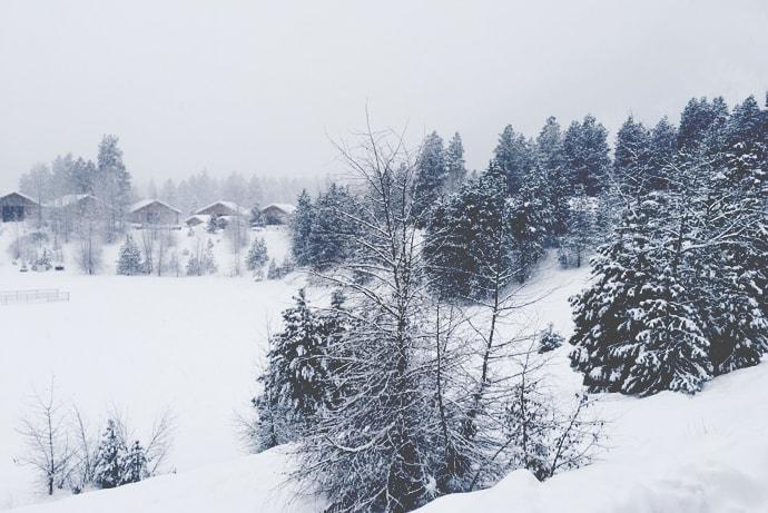 Wintery Leavenworth Baby Moon | Petite Modern Life