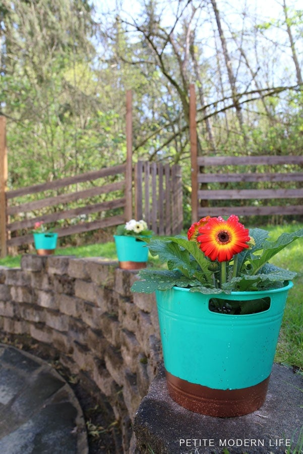 Dollar Store Copper dipped flower pots