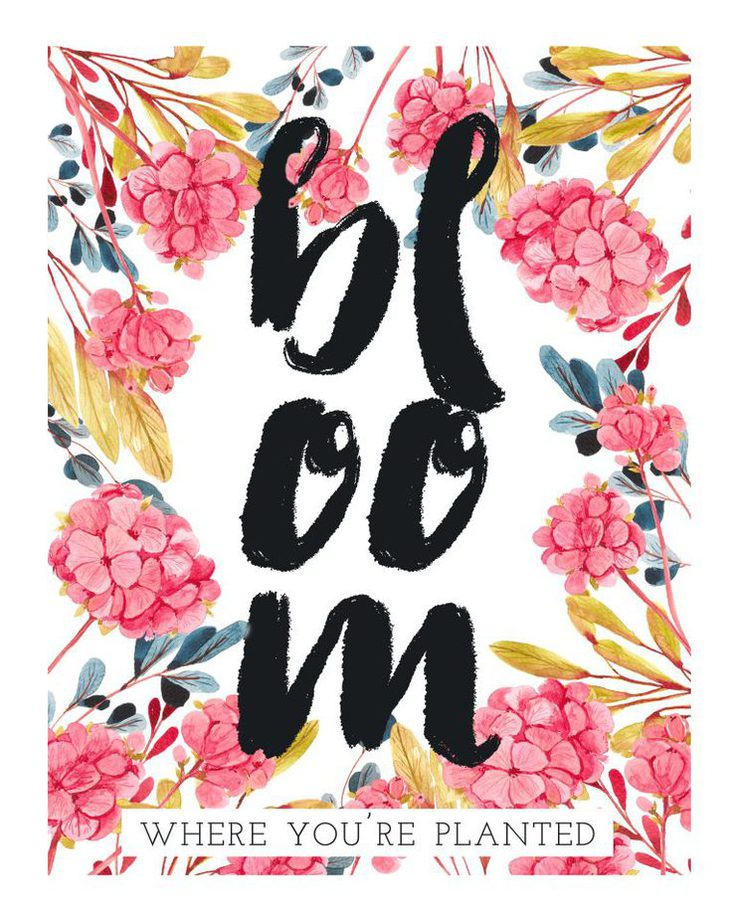 Bloom Where You're Planted Print