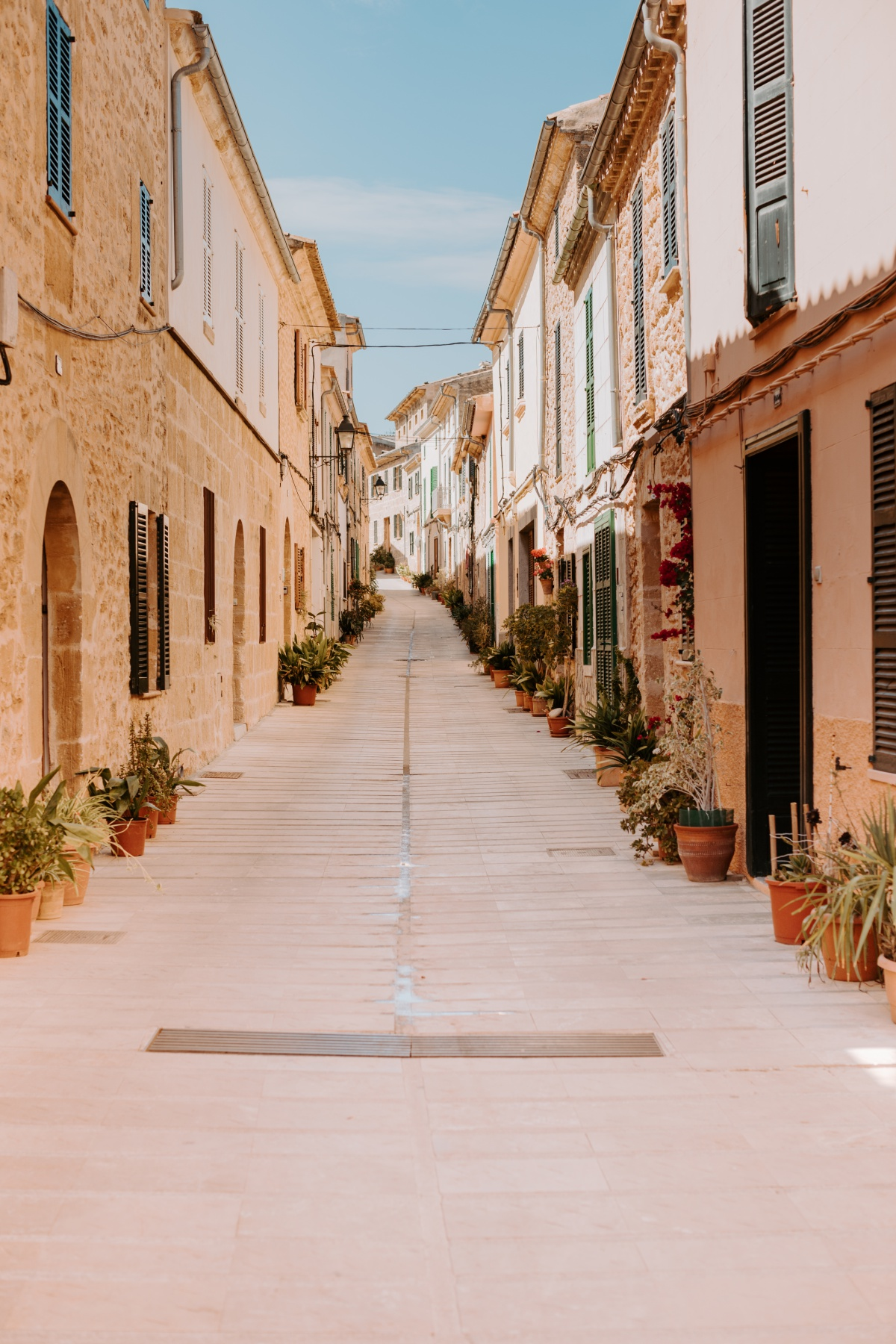 Touring Alcudia's spanish plant lined streets